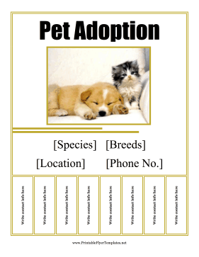 Pet Adoption Flyer Printable Template